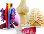 Anatomical-Modeling-On-Demand