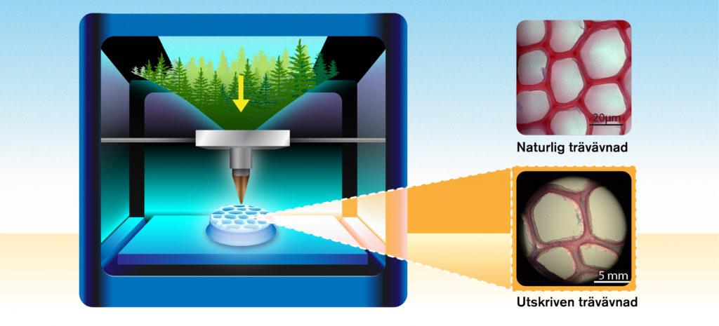 Trämaterial för 3d-utskrift kan öppna dörren för en rad nya återvinningsbara produkter.